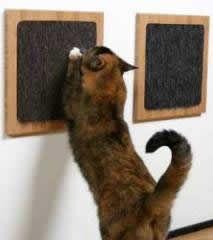 Como hacer rascador casero para gatos