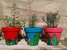 Macetas de cactus con aromaticas https://m.facebook.com/CosaslindasAM/