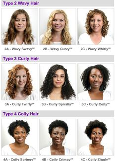Type 2 Hair   ... with pictures and all here: http://www.naturallycurly.com/hair-types