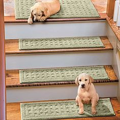 Machine-Washable, Anti-Slip Stair Treads-the perfect solution to slippery wood stairs. http://impc.co/12t4TX5