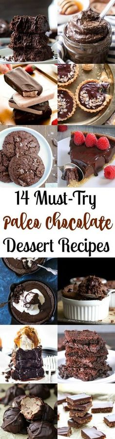 14 Absolute Must Try Paleo Chocolate Dessert Recipes - all gluten free, grain free, dairy free, refined sugar free and healthy.