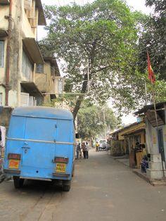 Pelas ruas de Kolkata