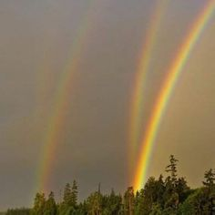 Triple rainbows- actually a 4th sort of there- once saw 5...it was the last time I went ANYwhere without a camera.