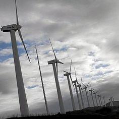 La industria renovable es una de las que más ha exportado.