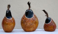 quail2012