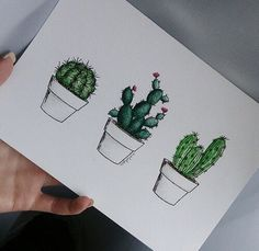 cactus, drawing, and green kép