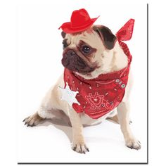 This ready to hang, gallery-wrapped art piece features a pug dressed as a cowboy. Kim Crisler is the Owner of Gifty Idea Greeting Cards Such! and Redhead Advertising Design--she is a freelance creativ