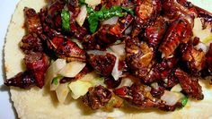 Mouth-watering Oaxacan style cricket tacos with caramelized onion and cilantro #tacos #food #foodporn #TacoTuesday #mexican #mexicanfood #Mexico #foodie #burritos #yum #dinner