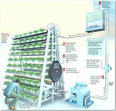 Resultado de imagem para vertical farming