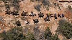 Mule riders begin their journey down the Bright Angel Trail en route to Phantom Ranch, more than 2,000 feet below the South Rim of the Grand Canyon. Mark Boster/Los Angeles Times