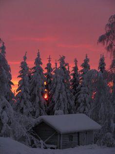 We're walkin' in a winter wonderland ❄️☃️ Winter Szenen, I Love Winter, Winter Christmas, Winter Sunset, Winter Cabin, Beautiful World, Beautiful Places, Beautiful Pictures, Fotos Goals