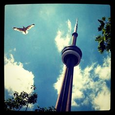 Stunning Cityscapes on Instagram - CN Tower, Toronto by @monicarooney