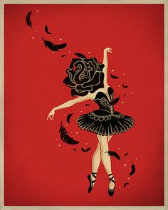 Black Swan   Flickr - Photo Sharing!