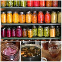 Over 2000 Free Canning Recipes For Any Season If you are thinking of saving a ton of money on food then canning can certainly do that. It can help you preserve food that you otherwise would just throw away in the trash. For example, you can go to a grocery store and take advantage of their sales. This is what I do. I always buy veggies, meat and even fruit if it's on sale and can what I don't use. I would say I have saved thousands of dollars over the years and I will continue to do so for