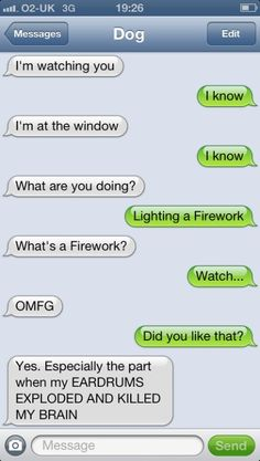 Dog texts. Yes. funny texts, funni text, anim, laugh, dogs, funni dog, dog texts, fireworks, smile
