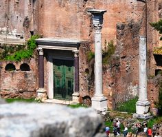 The Forum, Rome Italy