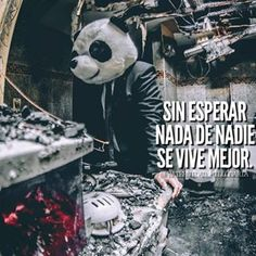 Reflection Quotes, Simple Quotes, Spanish Quotes, Weird Facts, Self Esteem, Slogan, Quotations, Joker, Sad