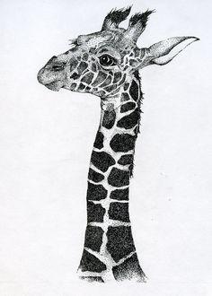 stippled giraffe