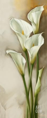 Callas Gracieux II Art Print by Igor Levashov at Art.com