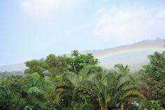 justine elizabeth: Oahu, Hawaii