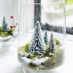 Turn a glass vase into a miniature winter wonderland.