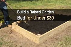 I've often recommended raised bed gardens to new gardeners, and for many reasons. First of all, it's easier on your back and joints. Since a raised bed is usually a foot or higher, you can sit on a stool and work rather than on your knees. Second, you'll have fewer weeds and pests to deal with. And third, the loose soil means you'll have less trouble planting seeds, better drainage, and a longer growing season. There are other reasons raised bed gardens are great, but you get ...