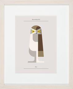Image of Burrowing Owl