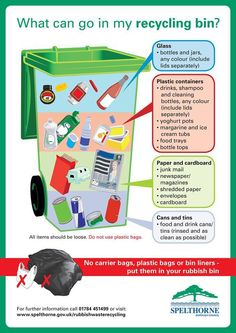 What can go in my recycling bins?