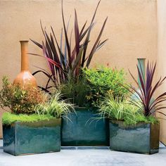 61 cool container gardens