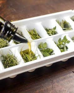 15 Foods You Should Freeze in an Ice Cube Tray is part of Freezing fresh herbs If your freezer makes ice, then your ice cube tray is probably sitting empty, frozen and alone, in the freezer door, or - Freezing Fresh Herbs, Preserve Fresh Herbs, Freeze Herbs, Fresco, Frozen Ice Cube, Preserving Food, Ice Cube Trays, Ice Cubes, Ice Tray