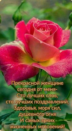 Happy Birthday Good Wishes, Birthday Wishes Flowers, Happy Birthday Photos, Birthday Cards, Love You, Humor, Motivation, Inspiration, Gift