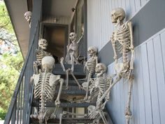 1000 Images About Skeletons On Pinterest