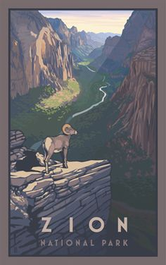 Zion Canyon Bighorn Sheep Zion National Park. I'm glad you got to spend your honeymoon her.