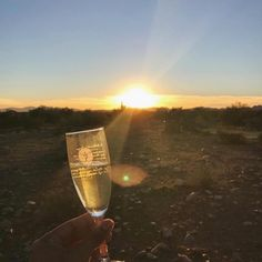 A toast to the settings un! Join us for afternoon hot air balloon rides in Phoenix, AZ, seasonally November-March. Balloon Rides, Hot Air Balloon, Living In Arizona, Tucson Arizona, We The Best, Places To See, Phoenix, The Good Place, Balloons
