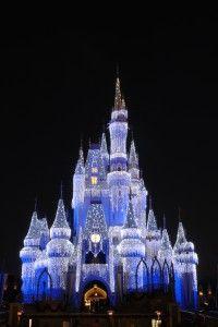 Disney World - magical!
