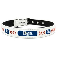 GameWear Tampa Bay Rays Classic Leather Medium Baseball Dog Collar