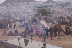 Amanecer en la feria de camellos de Puskar