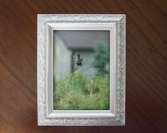 Framed Black Bird in Field Photograph 5x7 Home Decor for Wall or Shelf Bird Photography Fine Art Photo Nature Spring Summer Outdoors Meadow by ShutterTreePhotos on Etsy