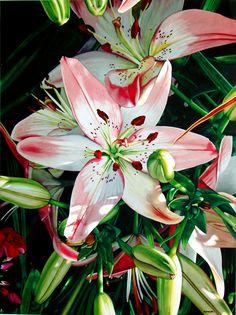 Marlin Rotach (b.1951) —  Bower's Blossoms (1722×2304)