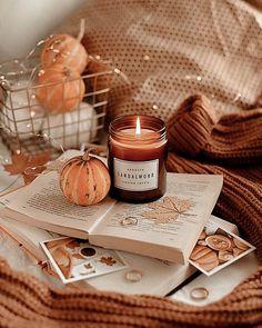Fall Wallpaper, Halloween Wallpaper, Fall Essential Oils, Autumn Cozy, Autumn Aesthetic, Fall Halloween, Women Halloween, Outdoor Halloween, Spirit Halloween