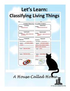 1000 images about classification dichotomous keys on pinterest dichotomous key activities. Black Bedroom Furniture Sets. Home Design Ideas