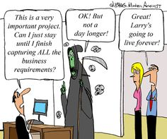Humor - Cartoon: How long does it take to capture ALL business requirements?