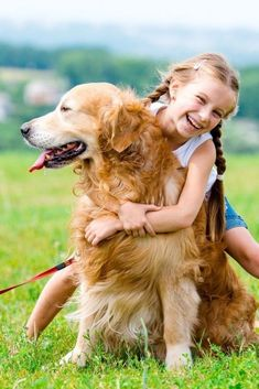 29 Ideas De Suéños Nombres Para Perros Machos Nombres De Perros Perros