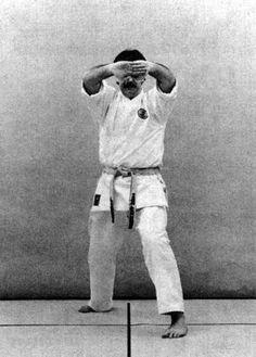 Shōtei morote uke Martial Arts, Pants, Fashion, Trouser Pants, Moda, Fashion Styles, Women's Pants, Combat Sport, Women Pants