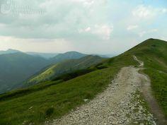 Droga na szczyt (zysków). Tatry mają wiele wspólnego z inwestycjami. Fot. Paweł Paśnik