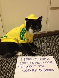 """This made me laugh so hard!!! I need to get a """"sweater of shame"""" for my cats, too :)"""