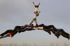 Li Wei, Meet on a bridge of magpies, 2011