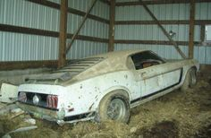 """""""Rare Finds"""" are Mustang treasures uncovered by enthusiasts. The Ford Mustangs featured here have been hidden away for a long time until they were rediscovered. Ford Mustang Boss, Mustang Cars, Mustang Humor, Ford Mustangs, Muscle Cars, Junkyard Cars, Car Barn, Abandoned Cars, Abandoned Vehicles"""