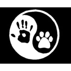 Ying Yang (hand to paw)