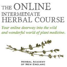 Learn Herbs As Food And As Medicine in the Online Herbal Course